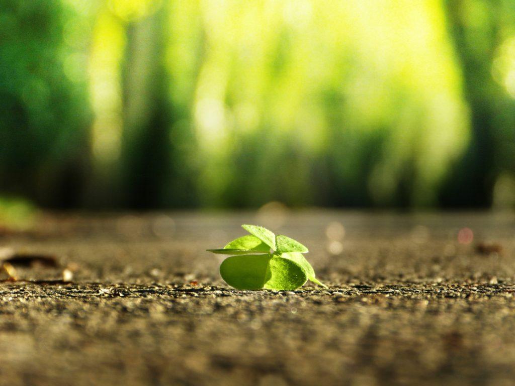 Šťastie na zemi