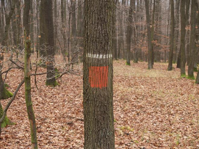 Hranica hospodárskeho lesa a užívateľského celku